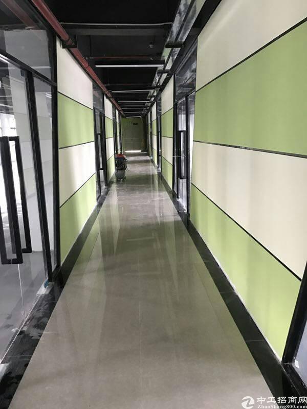 龙华新出带豪华装修厂房可分租高端园区-图4