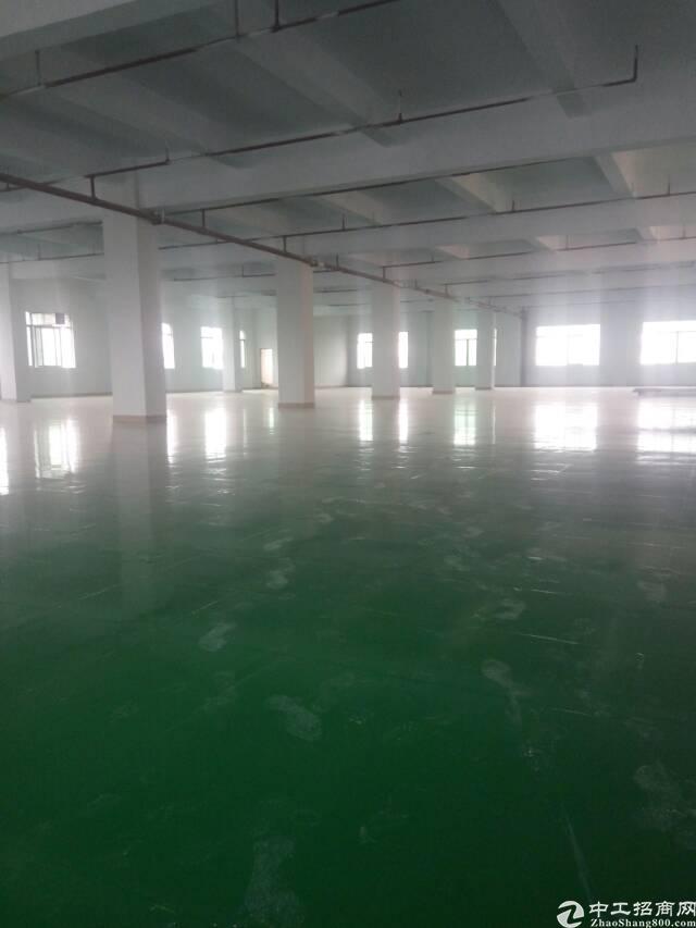 石碣东城区工业区新出楼上超靓厂房