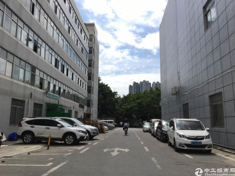 布吉 丹竹头地铁站附近5000平米厂房出租-图2