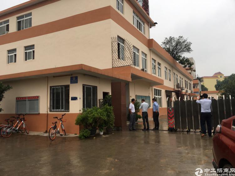 松岗中学后面一楼1200平方精装修厂房招租