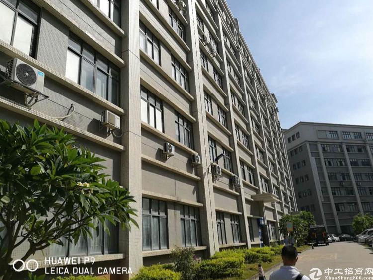 布吉 丹竹头地铁站附近5000平米厂房出租