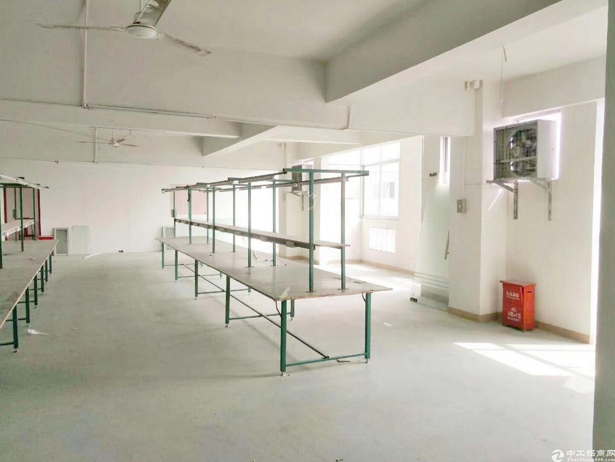 龙华汽车站附近400平厂房,园区形象好,空地大,水电齐全-图4