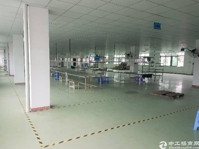 常平新出标准厂房二三楼各1500,大小可分租