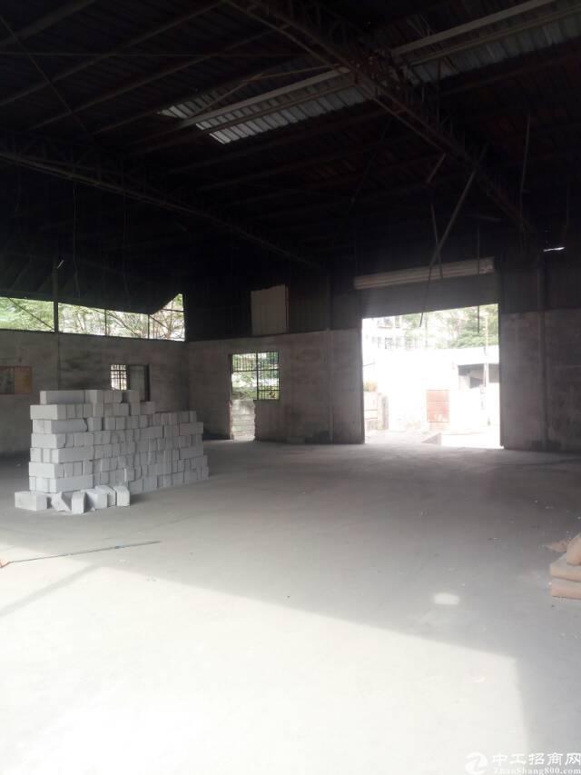 龙华大浪南路江南百货附近滴水7米原房东钢构出租
