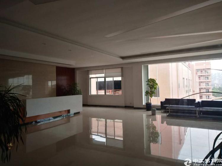 宝屯村独栋三层原房东厂房2400平方米带精装修车间办公室-图4