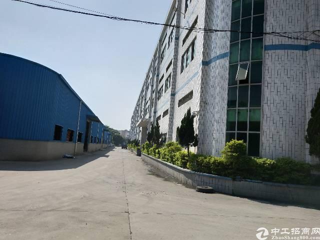 大岭山镇杨屋新出标准一楼2000平米出租