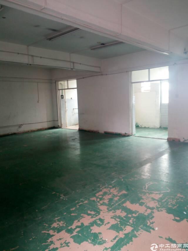 龙华深圳北站附近标准厂房楼上3000平可分租-图5