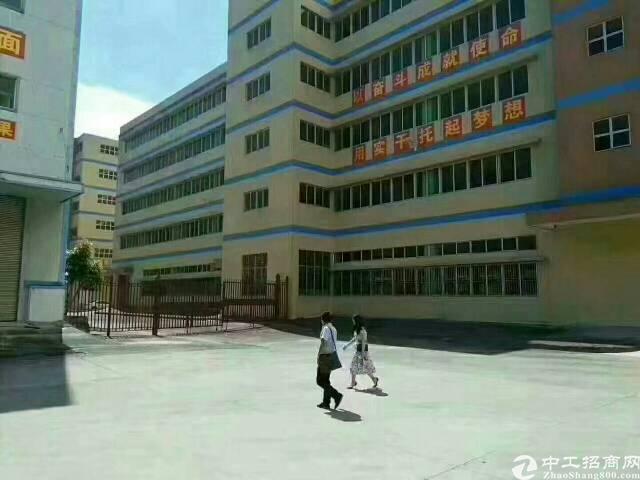 福永凤凰原房东红本厂房28800五栋厂房无公摊出租