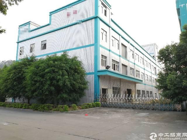 横沥镇 原房东3000㎡独院标准厂房 一楼7米高 带牛角