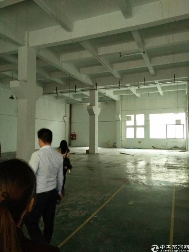 福永新和富桥工业区一楼800平厂房招租-图2