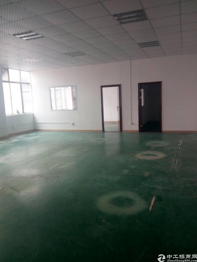 龙华深圳北站附近标准厂房楼上3000平可分租-图6