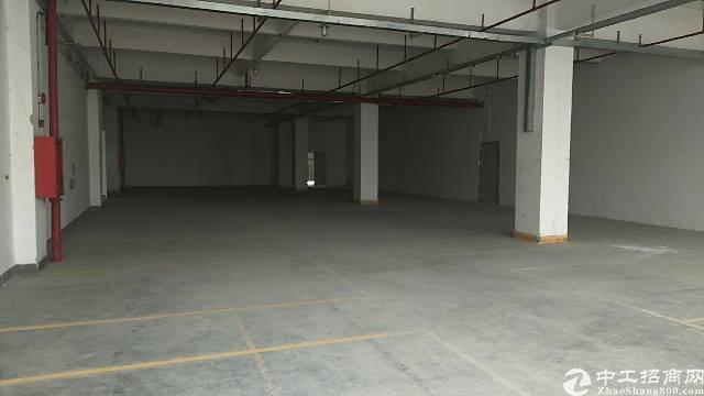 公明主干道边新出楼上1600平带装修免转让费标准厂房出租-图3