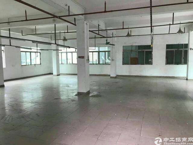 大岭山镇鸡翅岭村出租厂房1-3层910平-图2