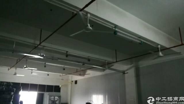 松岗松福大道边地铁口新出楼上精装修厂房780平-图3
