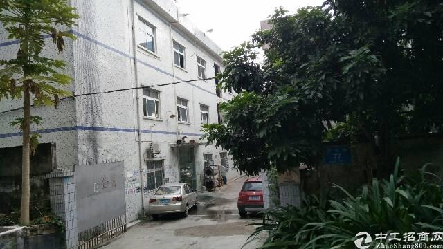 出租 龙岗区 横岗 惠盐中路附近新出来厂房