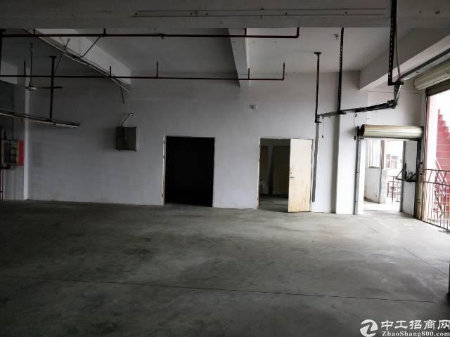 公明将石380平厂房出租-图5