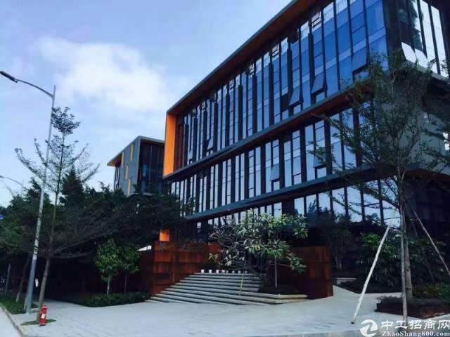 龙岗宝龙高薪低商务办公园区1600平图片4