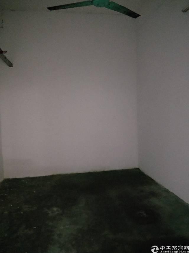 公明将石380平厂房出租-图2