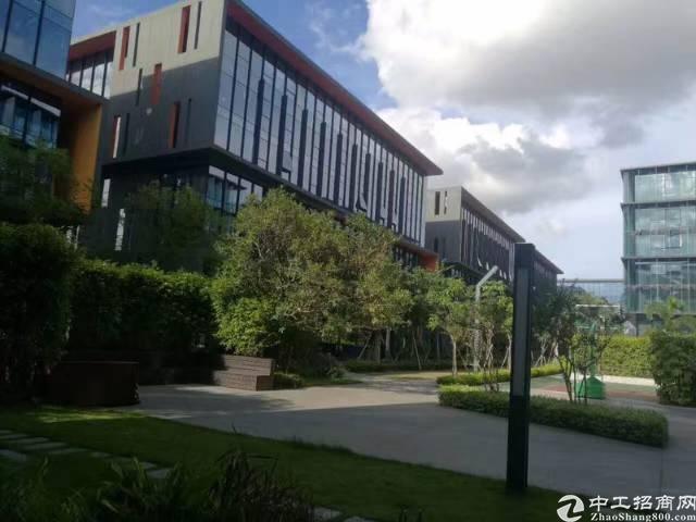 龙岗宝龙高薪低商务办公园区1600平