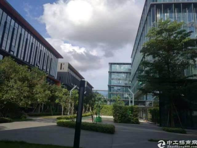 龙岗宝龙高薪低商务办公园区1600平图片2