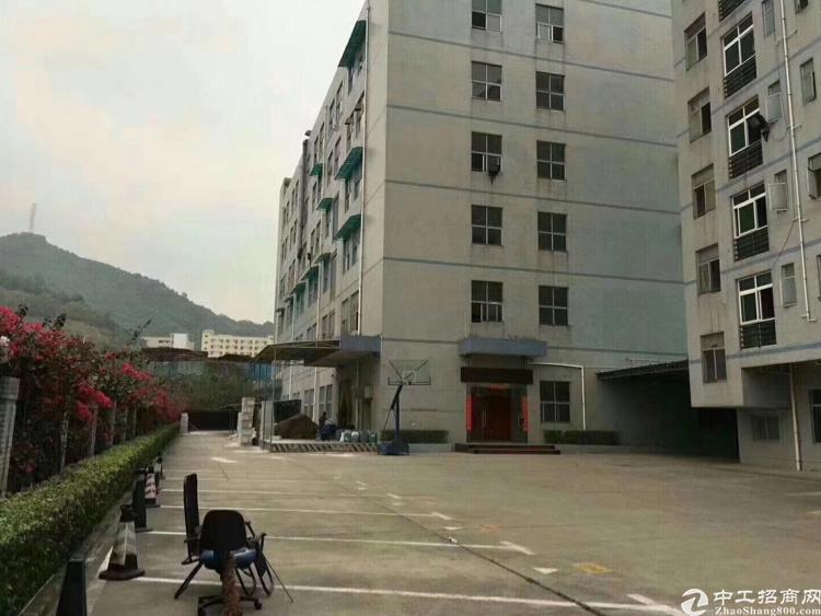 西丽关口独院厂房11000平米1…6层也可以分租
