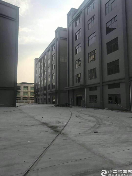 石岩单层1000平方,原房东厂房