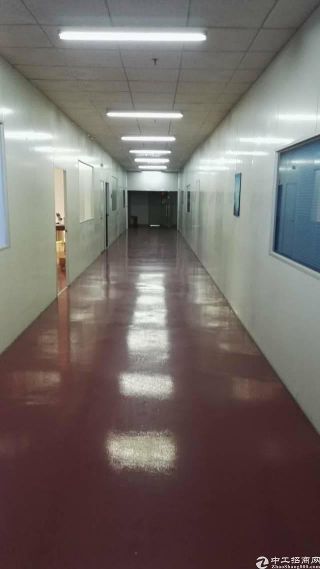 松岗东方大田洋松岗中学附近新出楼上一整层1800平方米带精装