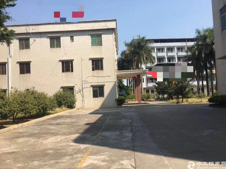 高埗镇 标准楼房 一楼3000平 234格2000平 空地5