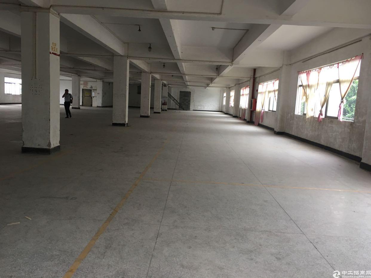 松岗燕川广田路边新出1-4层重工业厂房