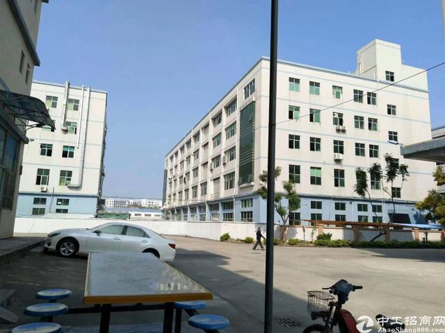 光明新区龙大高速出口处新出20000平方独门独院五层厂房出租
