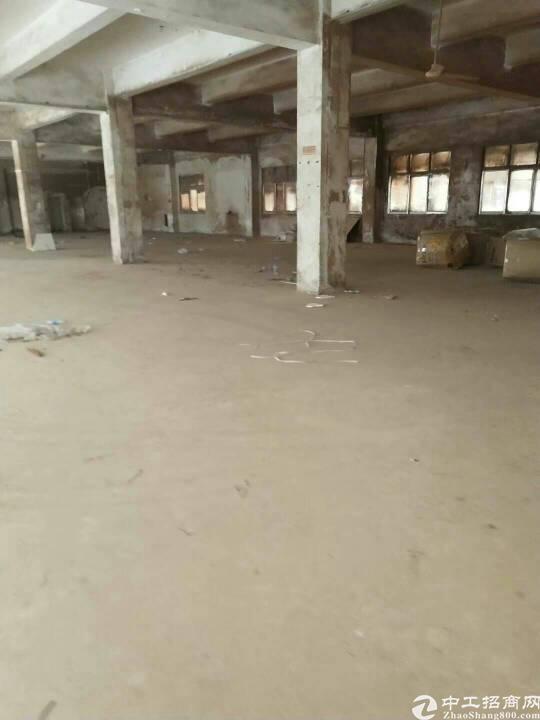 坪山新区坑梓新出1800平楼上整层标准厂房低价出租