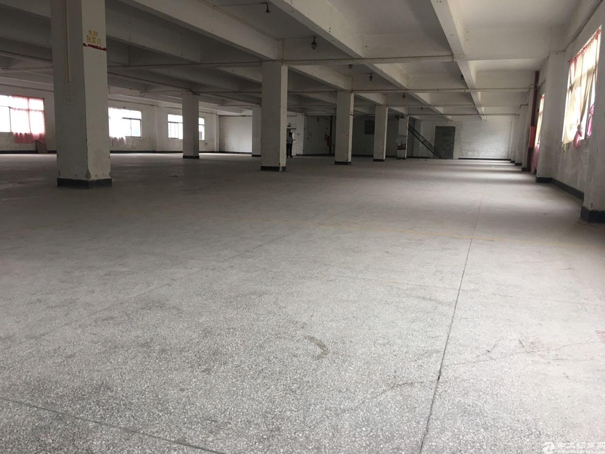 松岗燕川广田路边新出1-4层重工业厂房-图6