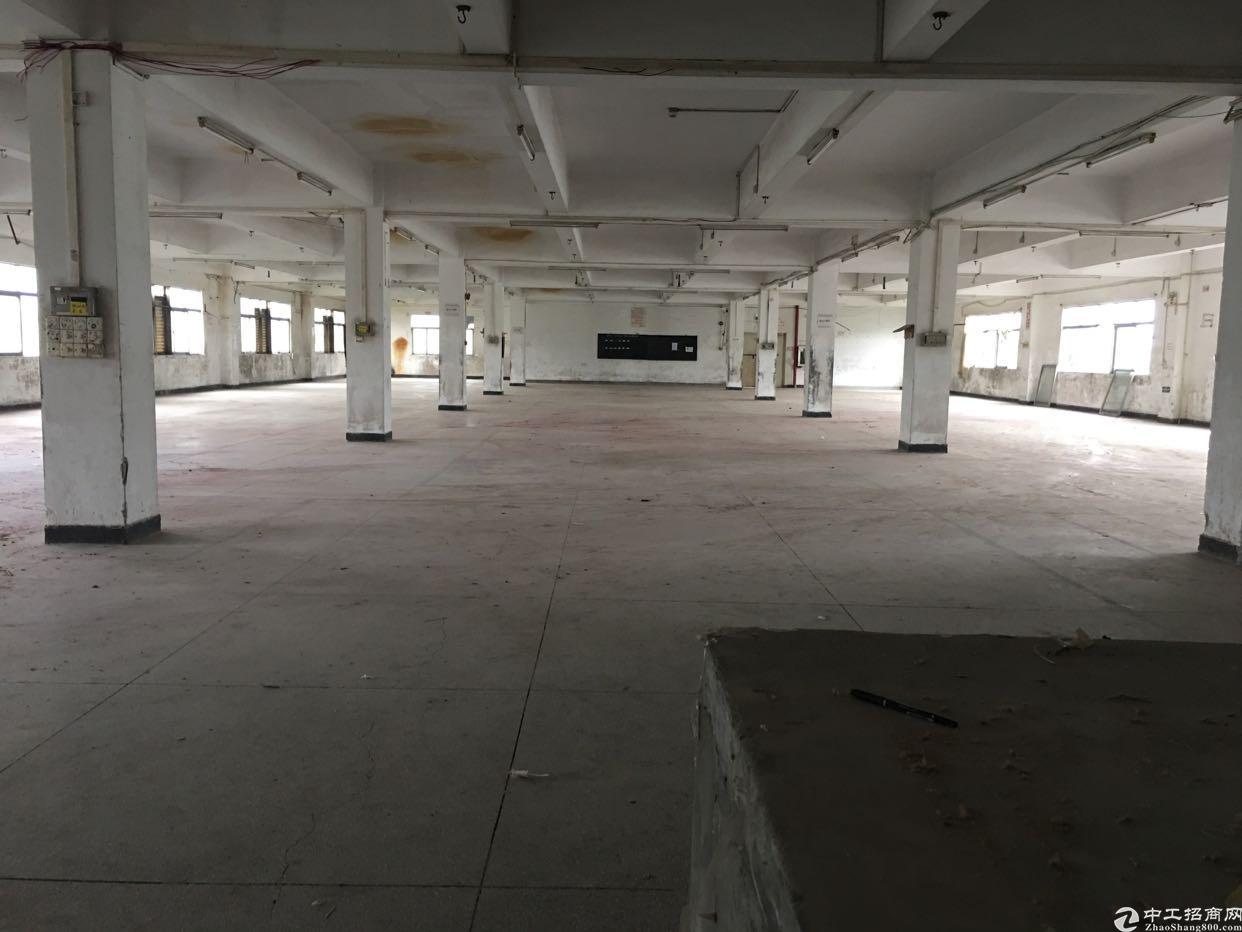 松岗燕川广田路边新出1-4层重工业厂房-图2