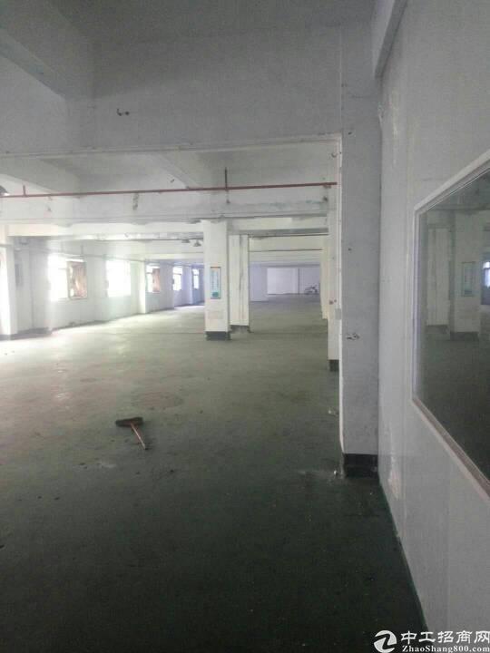 刘屋工业区分租标准一楼