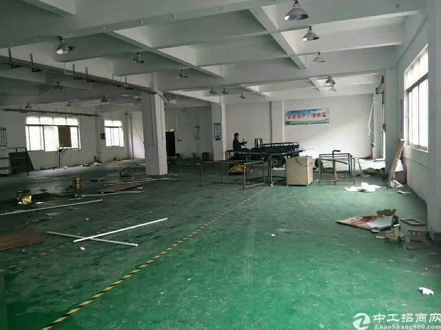 大岭山   颜屋村新出标准厂房一楼1000招租