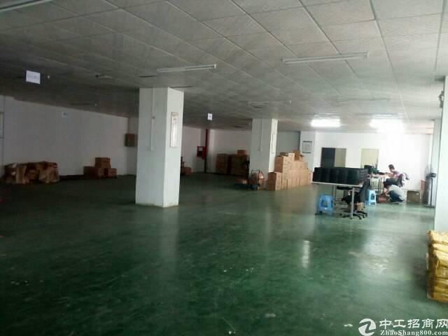 松岗塘下涌新出二楼1300平方精装修厂房