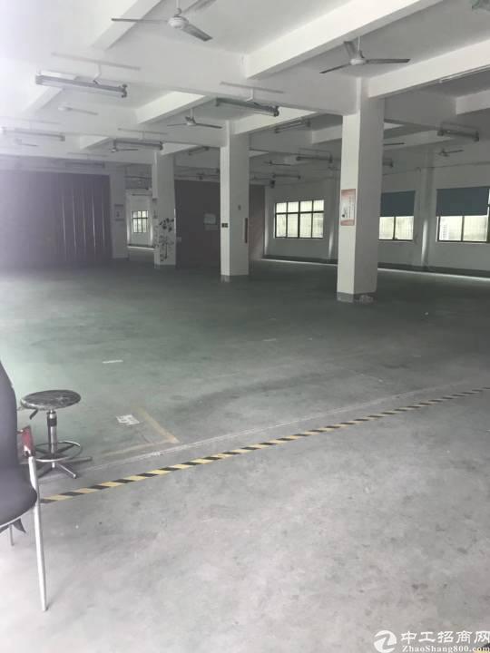 西乡独门独院4层6000平租40打包