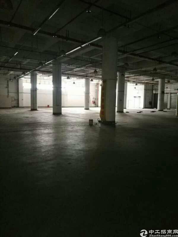 西丽地铁口仓库招租2400平方,主干道边