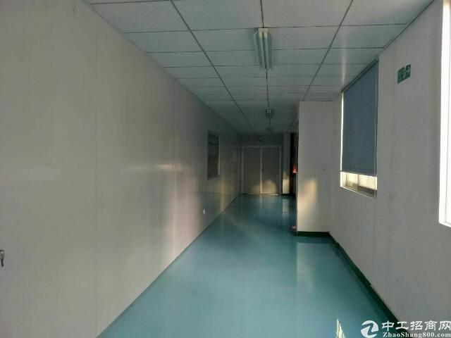 华荣路边上新出整层1800平豪华装修厂房出租。