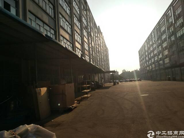 石岩水田福龙路口红本厂房15000平方厂房出租