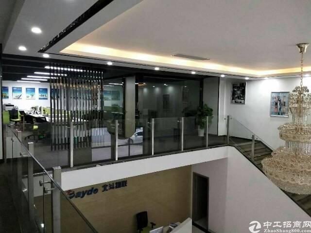 一楼精装修办公贸易厂房800m²出租-图2
