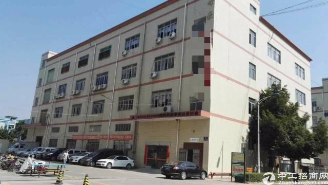 松岗东方大田洋松岗中学附近新出楼上一整层1800平方米带精装-图3