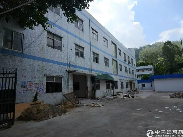 横岗安良社区原房东楼上500㎡厂房出租-图3