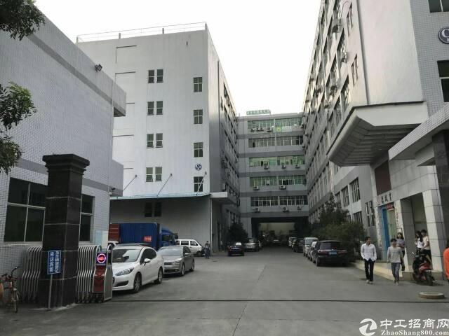 一楼精装修办公贸易厂房800m²出租-图4