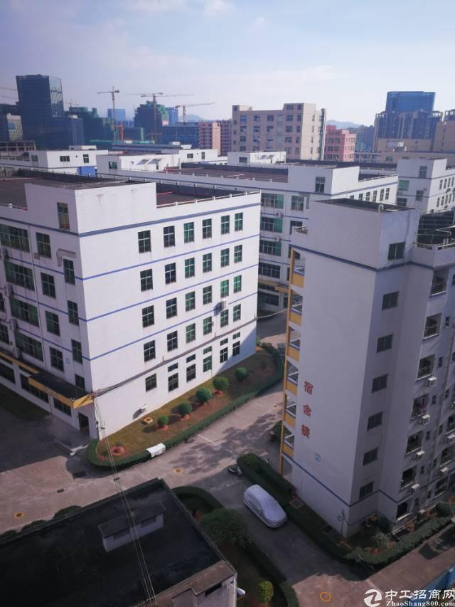 坂田上雪科技园楼上1750平方