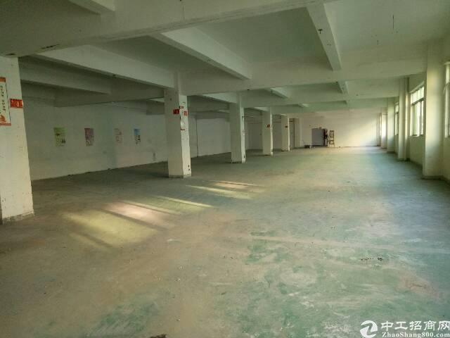 楼上新出原房东标准厂房700m²-图4