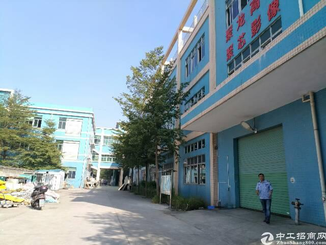 松岗大田洋新出一楼4000平米,全新办公室装修