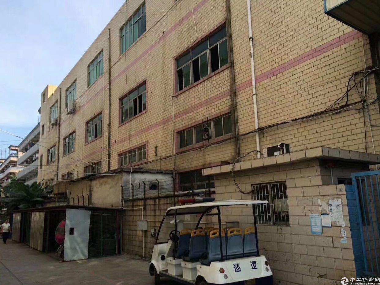 松岗新出独院厂房面积5100平米出租