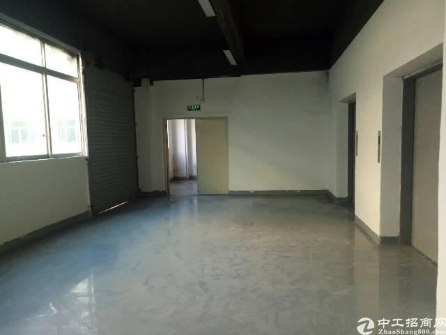 楼上新出原房东标准厂房700m²-图3