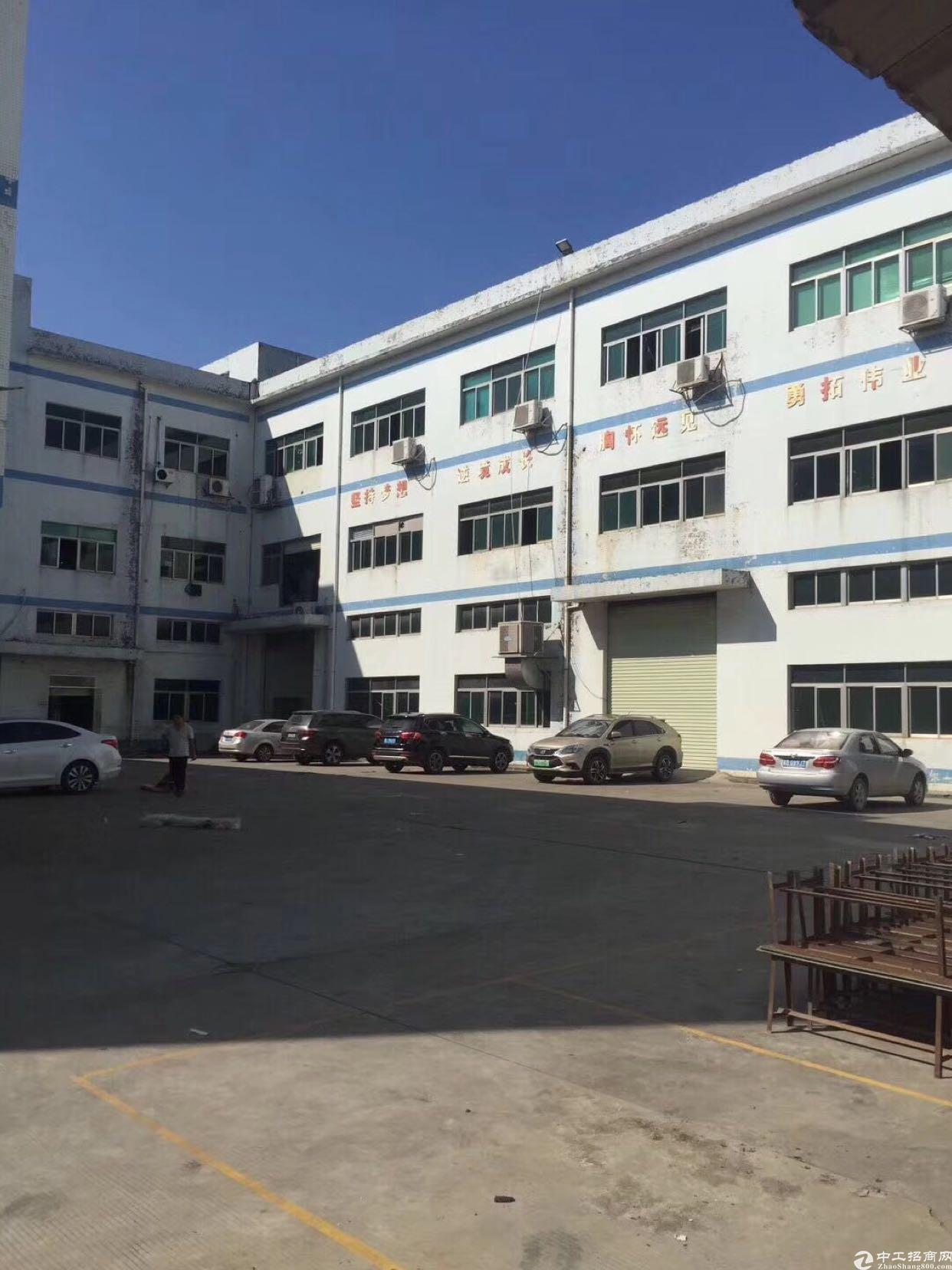 龙华新区500平精装修厂房,无转让费,面积实在